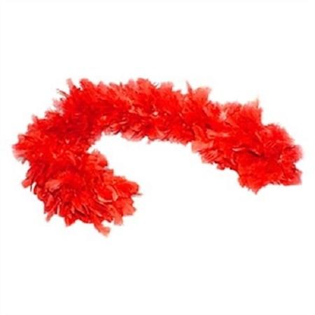 Boá Grande de Plumas Vermelha